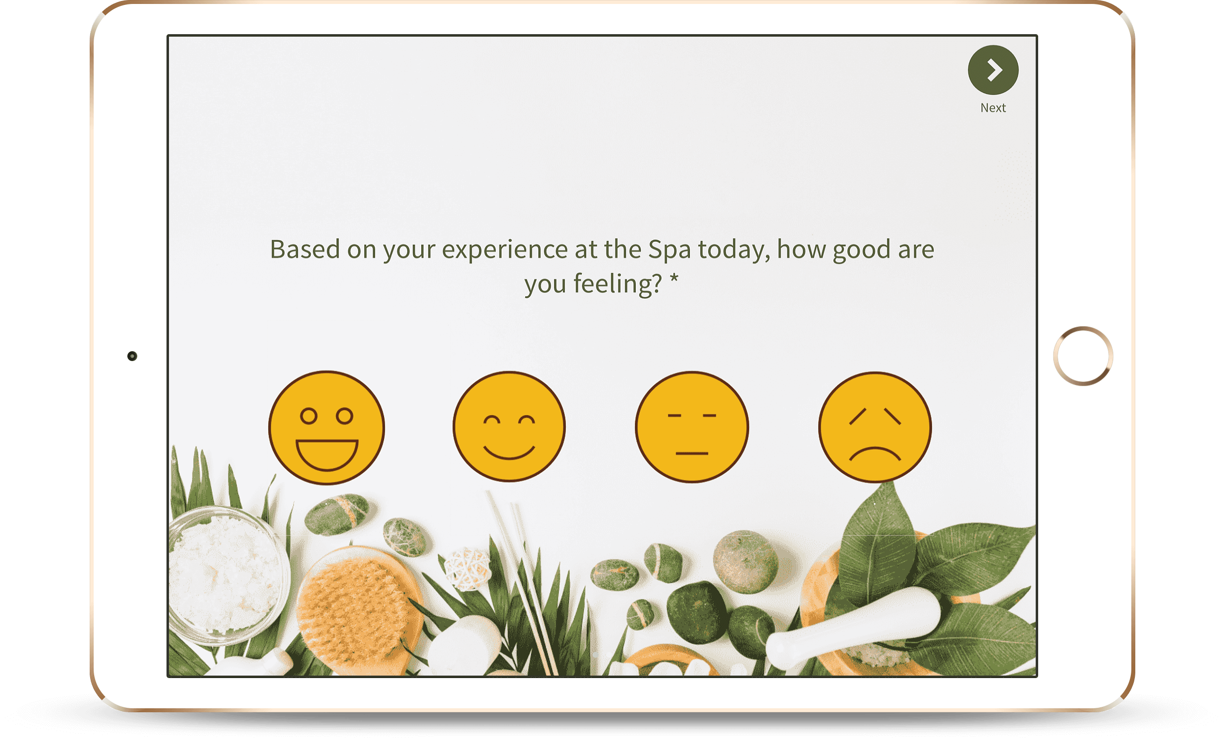 Spa-Feedback-Software